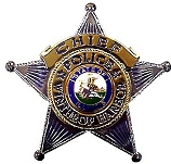 Chief's Badge